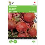 Beetroot seeds Kogel 5,  Loki