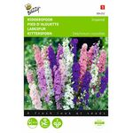 Larkspur flower seeds
