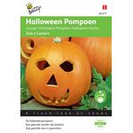 Haloween Pumpkin Seeds