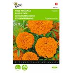 African Marigold Hawaii seeds