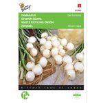 Pickling Onion Seeds