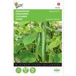Cucumber seeds Euphoria F1 hybrid