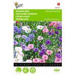 Cornflower seeds mix