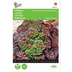 Lettuce Besson Seeds