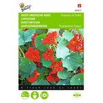 Nasturtium red flower seeds