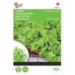 Leaf lettuce seeds Australian