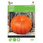 Pumpkin Seeds Red Etampes