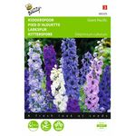 Larkspur Seeds Giant Pacific