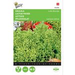 Lettuce seeds Lollo Bionda