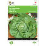 Lettuce seeds Rhénania