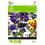 Flowerseed mixture of the Pansy Swiss Giants