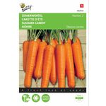 Summer Carrot Nantes seeds