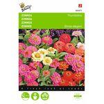 zinnia flower seeds