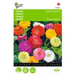 Zinnia Dahlia flower seeds