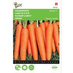 Summer Carrot Seeds F1