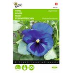 pansy seeds blue