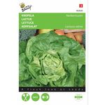Lettuce Seeds Summerdiamond