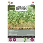 Microgreens seesd Cress Common