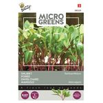 Microgreens seeds Swiss Chard Rainbow mixture