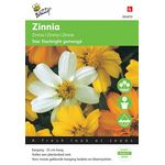 Zinnia Flower Seeds Starbright