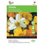 Zinnia Flower Seeds Starbright