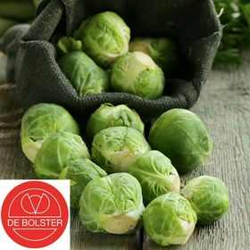 Organic Brussels Sprouts Groninger