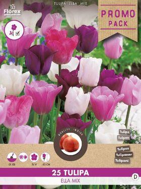 Tulpen bloembollen Geel Tarda Dasystemon