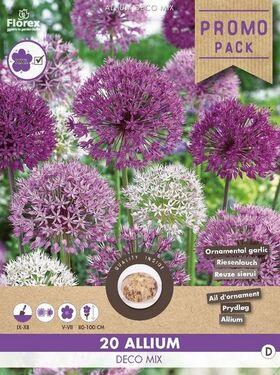 Allium Promo pack 20st. Deco Mix