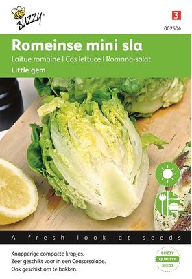 Cos Lettuce seeds Little Gem