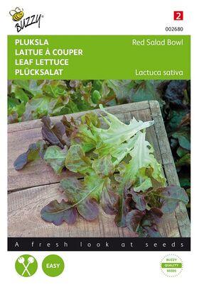 Leaf lettuce Red Salad Bowl