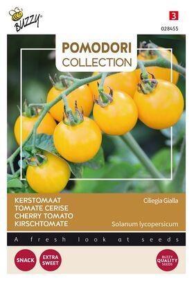 Pomodori Tomato Ciliegia Gialla