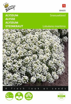 Alyssum Snowcloth flower seeds