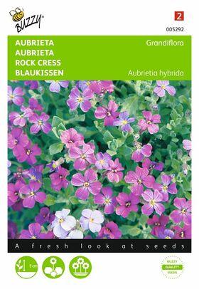 Aubrieta mixed flower seeds