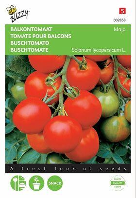 Bushtomato seeds