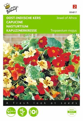 Nasturtium flower seeds mini
