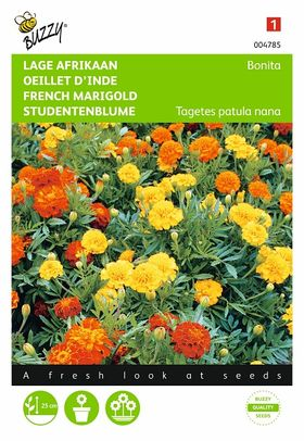 French marigold flower seeds