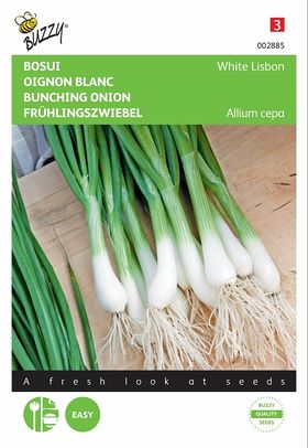 Bunching Onion Seeds