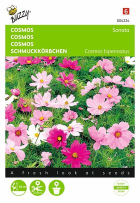 Cosmos Flower Seeds