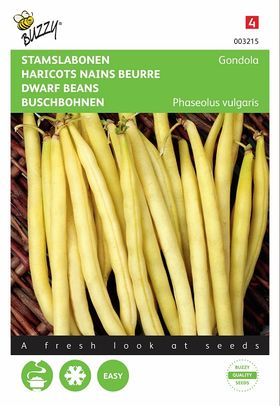 Dwarf Beans Seeds Gondola yellow