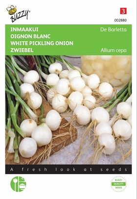 Pickling Onion Seeds