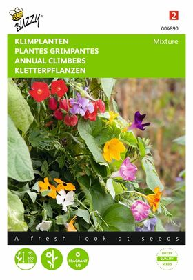 flower seeds for climbing plants