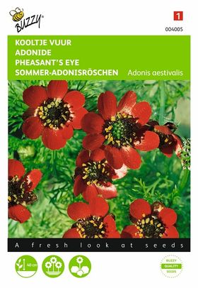 Pheasant's Eye Seeds