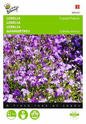 Lobelia flower seeds