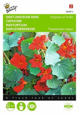 Nasturtium red flower seeds