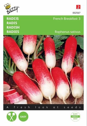 Radish Seeds French Breakfast