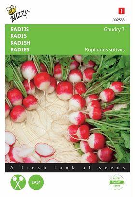 Radish Seeds Gaudry