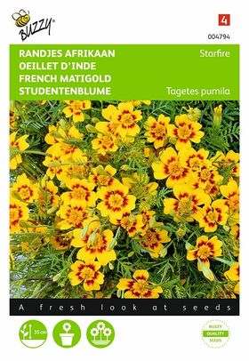 signet marigold flower seeds