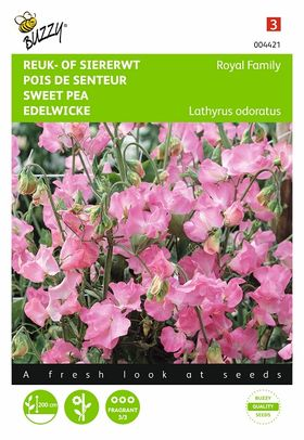 Pink Sweat Peas flower seeds