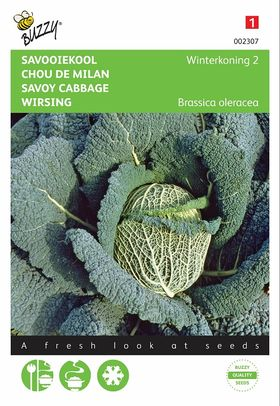 Savoy Cabbage seeds