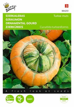Ornamental Gourds seeds